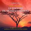 Eckhart Tolle - Mettre en pratique Le pouvoir du moment présent - Enseignements essentiels, méditations et exercices pour jouir d'une vie libérée artwork