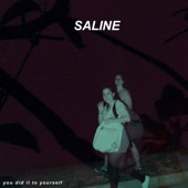 Saline - Fast and Great