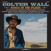 Colter Wall - The Trains Are Gone