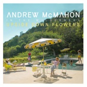 Andrew McMahon In the Wilderness - Paper Rain