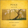 Peace Music For Life