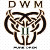 Pure Open 2
