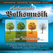 Authentische Volksmusik zur Winterzeit - Various Artists - Various Artists