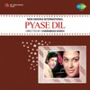 Pyase Dil Original Motion Picture Soundtrack Single