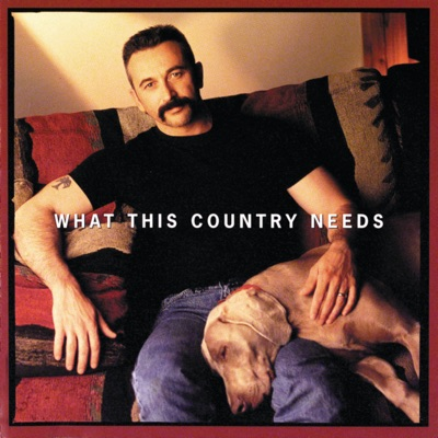 What This Country Needs - Aaron Tippin