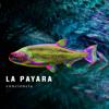 La Payara - Bogotá artwork