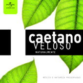 [Download] Samba de Verão MP3