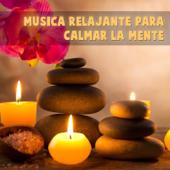 [Download] Meditación Chamánica MP3