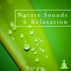 Nature Sounds Relaxation and Tibetan Chakra Meditation - Music for Relaxation, Meditation, Deep Sleep, Healing Therapy, Massage, Spa, Baby Sleep and Yoga