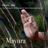 Meditation Tunes Pakshi Bird Mayura