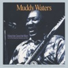 Hoochie Coochie Man: Live at the Rising Sun Celebrity Jazz Club (1977), Muddy Waters