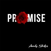 Andy Stokes - Promise