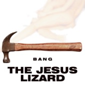 The Jesus Lizard - Fly On the Wall