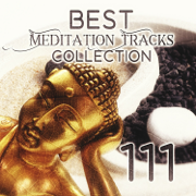 111 Best Meditation Tracks Collection: Oasis Sounds of Nature with Native American Flute for Deep Relaxation, Japanese Zen Garden Music, Pure Massage Music, Healing Spa, Serenity Sleep Songs - Various Artists - Various Artists