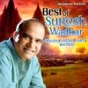 Best of Suresh Wadkar
