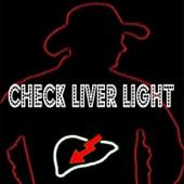 Jamie Bergeron & The Kickin' Cajuns - Check Liver Light