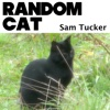 Random Cat - Single - Sam Tucker