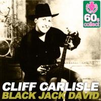 Black Jack David