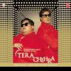 Tera Chehra - Adnan Sami mp3