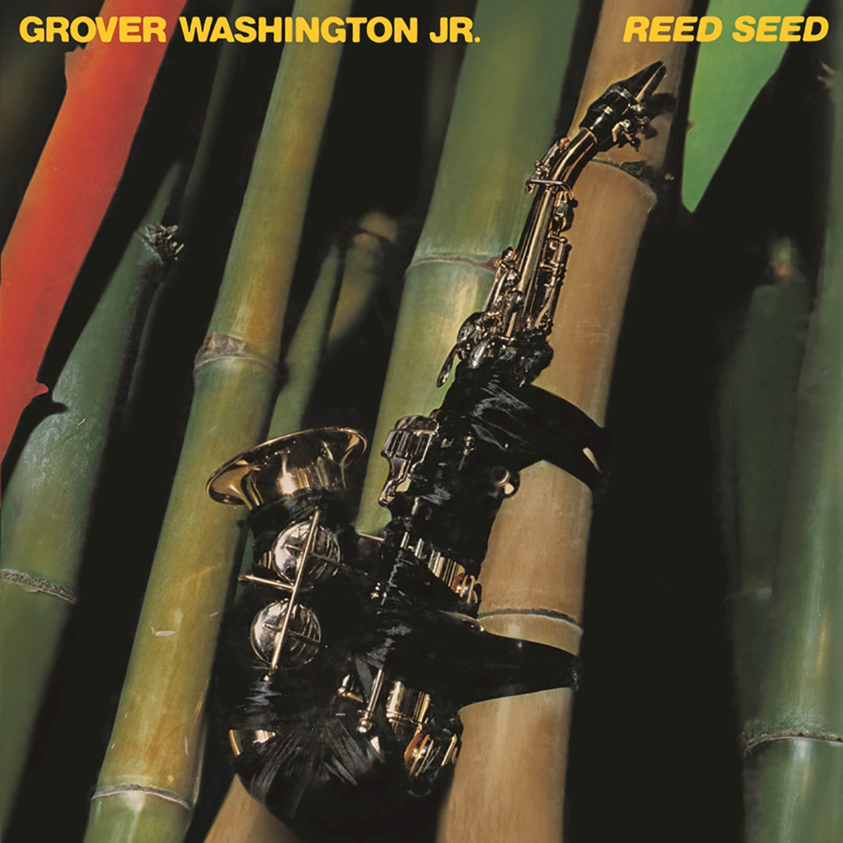 Reed Seed Album Cover By Grover Washington Jr