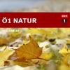Ö1 Vom Leben der Natur
