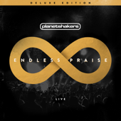Endless Praise (Deluxe Edition)