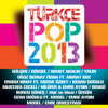 Various Artists - Türkçe Pop 2013 artwork