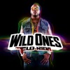 Flo Rida - Wild Ones feat Sia Song Lyrics