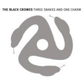 The Black Crowes - How Much for Your Wings?