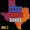 Verschillende artiesten - Texas Garage Bands, Vol. 2 kunstwerk