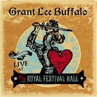 Live At the Royal Festival Hall - Grant Lee Buffalo
