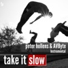 Peter Hollens & AVbyte - Take It Slow  Single Album