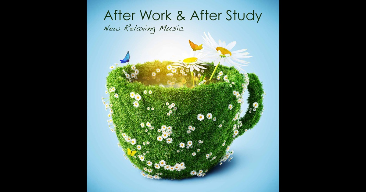 Work & Study in Italy