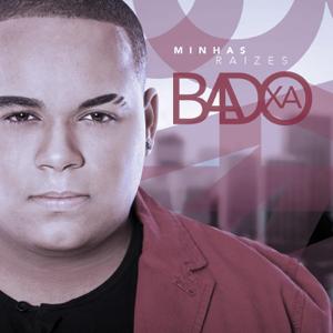 Badoxa - Controla