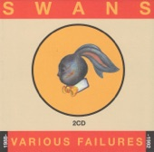 Swans - The Other Side Of The World