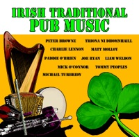 Irish Traditional Pub Music by Castle Céilí Band & Sixteen Ninety-One on Apple Music