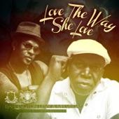 Love the Way She Love (feat. Mr. Vegas) - Single