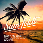 Show Me Love (feat. Kimberly Anne) [EDX Remix / Radio Edit]