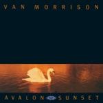 Van Morrison - Coney Island