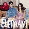 Éléphant - Collective mon amour Album