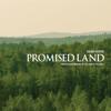 Brian Hardin - Promised Land  artwork
