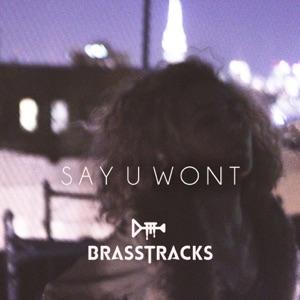 Say U Won't - Single Mp3 Download