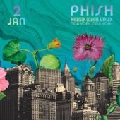 Phish - Harry Hood (Live)