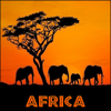 African Safari - Derek Fiechter