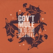 Gov't Mule - Just Got Paid