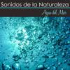 Selva Amazonica - Sonidos Naturales Relax