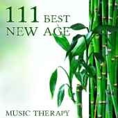 111 Best New Age Music Therapy: Relaxing Songs for Meditation, Massage, Yoga, Study, Baby, Serenity, Spa, Reiki, Pregnancy, Sleep, Tantra, Chakra, Zen, Tranquility, Mantra