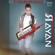 Netfekar le passé - Cheb Rayan