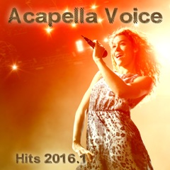 Acapella Voice Hits 2016.1