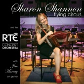 Sharon Shannon - Dreamcatcher
